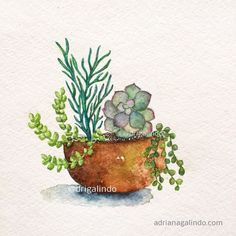 Copyright by Adriana Galindo - Suculentas, Succulents, nature, natureza, aquarela, watercolor, namaste, illustration, ilustracao, wedding, flor, flower, invitation, plantas, cactus, cacto, adrianagalindo, drigalindo