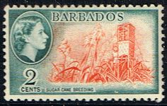 Barbados 1953 QE II SG 290 Sugar Cane Breeding Fine Mint Other British Commonwealth Empire and Colonial Stamps Here