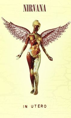 This super deluxe version of Nirvana's third and final album,In Utero,features re-mastered and previously unreleased tracks as well as live material and never-before-heard demos.