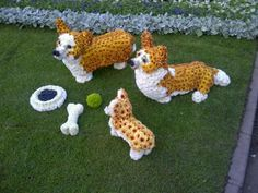 In honour of the Queen's jubilee, even the Corgis were bedecked with flowers at the Chelsea Flower show : FTinsider