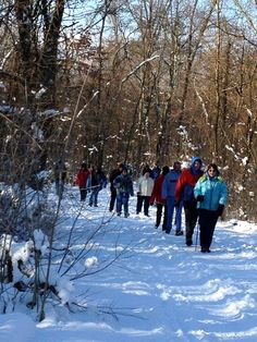 Winter Hike 2013 at Blacklick Woods. Gorgeous winter day!