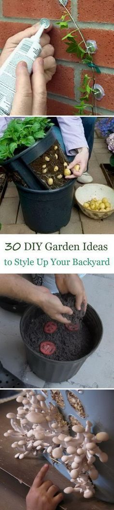 DIY Garden Ideas To Style Up Your Backyard To The Next Level