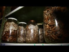 Dustin Olsen of The Mushroomery in Lebanon, Oregon, shares some tips for growing a variety of wild mushrooms in your own backyard. Read the full post on Cook. Growing Mushrooms At Home, Garden Mushrooms, Edible Mushrooms, Wild Mushrooms, Stuffed Mushrooms, Mushroom Grow Kit, Mushroom Spores, Organic Protein, Grow Your Own Food