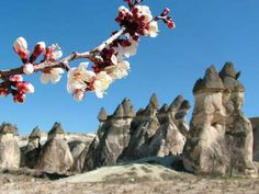 Cappadocia Tour by Plane – 1 Day & 1 Night