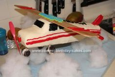 Check out this wonderful Cessna airplane cake. Perfect for airplane lovers.     Baked by Nicole from Floral City, Florida.