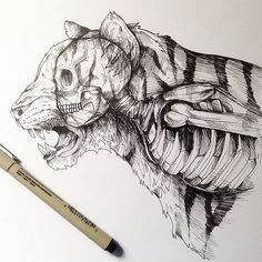 Awesome Surreal Drawings Pen by Alfred Basha. => how to show your spirit animal Amazing Drawings, Beautiful Drawings, Cute Drawings, Ink Drawings, Alfred Basha, Ink Pen Art, Black Ink Tattoos, Arte Horror, Life Drawing