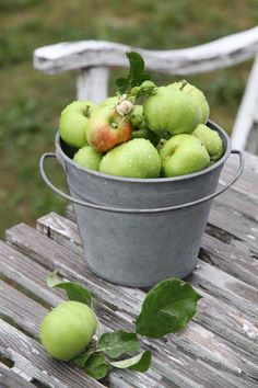 I remember being at my great grandparents orchard. Climbing trees and picking countless pails of apples and cherries.