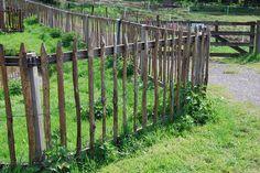 Stokkenhek naar boerderij by alwinoll, via Flickr