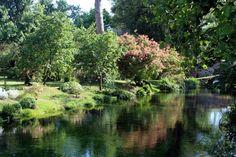Il Giardino di Ninfa, oasi a due passi da Roma