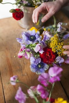 Tips for beautiful flowers on a budget.