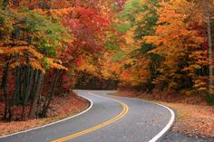 Minnesota Travel Road Trip and Day Trip Tours