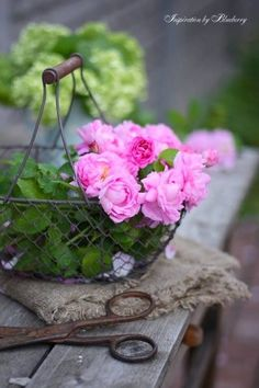 Hey there gals, sorry I am a little late. Tonight lets do the Potting Shed, but lets be sure there are floral's in the pin. Thank you all and happy pinning!