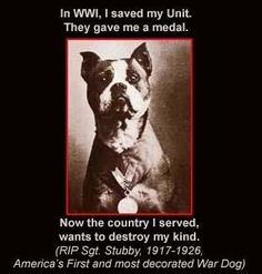 In WWI, I saved my Unit. They gave me a medal. Now the country I served, wants to destroy my kind. (RIP Sgt. Stubby, 1917 - 1926, America's First and most decorated War Dog)