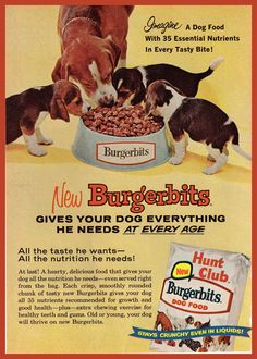 Beagles in Vintage Burgerbits ad