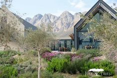 Country dining at the stylish Bosjes Kombuis - Lanalou Style Texas Homes, Down South, South Africa, Beautiful Places, Cape Town, The Incredibles, Dining, Country, Architecture