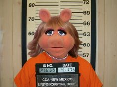 A very embarrassing and shameful time for Miss Piggy. She still chooses not to discuss it......