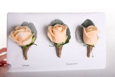 Peach rose buttonholes - Rustic wedding flowers made by Amy's Flowers