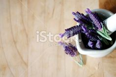 Fresh Lavender in Pestle and Mortar Royalty Free Stock Photo