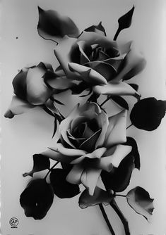 Rose Drawing Tattoo, Realistic Rose Tattoo, Tattoo Design Drawings, Tattoo Sketches, Skull Tattoo Flowers, Rose Flower Tattoos, Rose Reference, Flor Tattoo, Black And White Roses