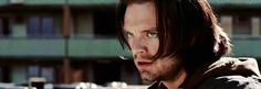 Accidental Model Bucky Barnes. <<< That comment xD just YES