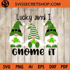 St Patrick's Day Crafts, Rock Crafts, Diy And Crafts, Crafts For Kids, Gnome Paint, Happy St Patricks Day, Saint Patricks, St Patrick's Day Decorations, Cricut Craft Room