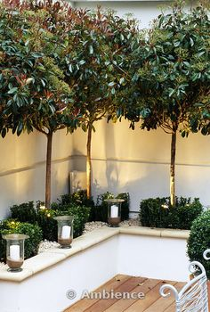 Garden Design Modern Roof garden with white raised bed, glass Candle Holders, clipped box, white Gravel and Standard Photinias. Great idea for a privacy screen around a seating area - Development by Candy Brothers: lighting: lighting Design Int. Small Garden, Garden Seating Area, Small Gardens, Front Yard, Modern Garden, Modern Garden Design