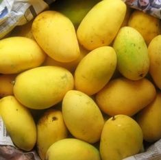 Philippines has all the variety of exotic MANGOES you could imagine to eat! This is just one of the common ones :-) very sweet when ripened!