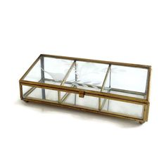 Vintage Glass Display Case - Glass Terrarium - by VintageModernHip on Etsy