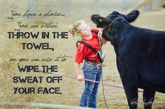 Super Dairy Cattle Showing Quotes Horses Ideas Livestock Judging, Showing Livestock, Cow Quotes, Life Quotes, Fair Quotes, Show Cows, Show Steers, Dairy Cattle, Show Cattle