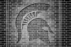 Michigan State University - Spartans Will | Flickr - Photo Sharing!