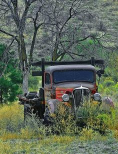 Antique Trucks, Vintage Trucks, Antique Cars, Farm Trucks, Old Trucks, Classic Trucks, Classic Cars, Abandoned Cars, Abandoned Vehicles