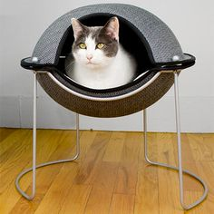 The stylish Hepper pod cat bed by PetFancy can be used either open or closed to give your cat the luxury of a soft place to rest or the privacy that kitties desire.