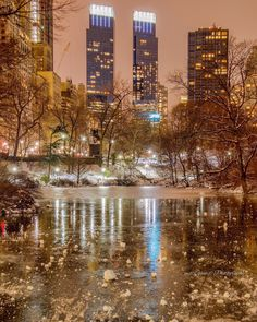 Frozen evening at CentralPark by @mitzgami | via newyorkcityfeelings.com - The Best Photos and Videos of New York City including the Statue of Liberty Brooklyn Bridge Central Park Empire State Building Chrysler Building and other popular New York places and attractions.