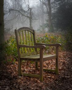 Woodland Throne