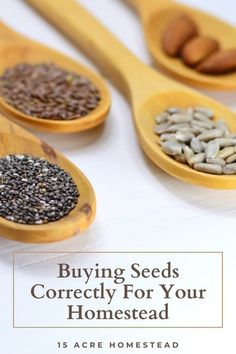 Did you know there is actually way more that needs to go into buying seeds than just placing an order for them? Learn all about how to choose the right ones. Starting A Vegetable Garden, Home Vegetable Garden, Growing Herbs, Growing Vegetables, Lactation Boosting Foods, Healty Dinner, Buy Seeds, Gardening For Beginners, Gardening Tips