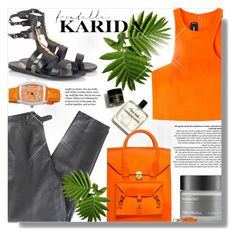 """Fratelli Karida"" by jiabao-krohn ❤ liked on Polyvore featuring Lafayette 148 New York, Perricone MD, Ancient Greek Sandals, Dsquared2, Activa and FratelliKarida"