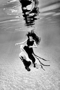 Méduse terrestre immergée