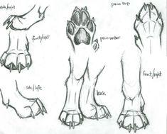 wolf paw sketch