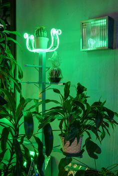 Green Lighting Aesthetic Urban-Life Night Photography by Nanda Vigo Green Lighting Aesthetic Urban-L Green Theme, Green Colors, Neon Green, Colorfull Wallpaper, Green Wallpaper, Rainbow Aesthetic, Aesthetic Colors, Aesthetic Green, Urban Aesthetic