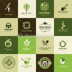 Set of icons for organic food and restaurants — Stock Illustration #30158537