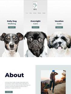 Pet Store, Website, Grill Restaurant, Bbq Grill, Pets, Portugal, Shop, Bar Grill, Pet Shop