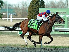 Dubai Sky collected his fourth straight victory and second straight stakes with an impressive win in the $550,000 Spiral Stakes (gr. III) March 21 at Turfway Park.3/21/15