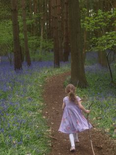 Wooten Wawen Bluebell Woods - Here Come the Girls