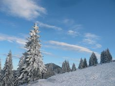 winter in #Transylvania (phot made by: Polgár Marianna)