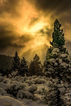 Mystic mood (near Bishop, California) by TrieuHuong Nguyen / 500px