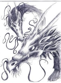 drawings of dragons | dragons pen drawing by luxray insanity traditional art drawings ...