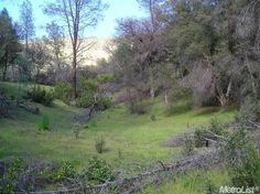 Check out this Land in RUMSEY, CA - view more photos on ZipRealty.com: http://www.ziprealty.com/property/1460-HWY-16-RUMSEY-CA-95679/83979992/detail?utm_source=pinterest&utm_medium=social&utm_content=home
