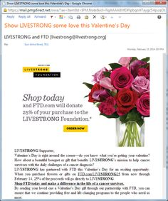 Valentine's Day campaigns from Livestrong / FTD, Heifer International & Food for the Poor.