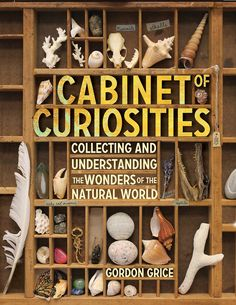 Cabinet of Curiosities: Collecting and Understanding the Wonders of the Natural World by Gordon Grice ~ Great hands on book for older kids and teens. Saving this one for when Liam gets a little older. We already love to collect things from nature. Natural World, Natural History, Nw Natural, Letterpress Drawer, Printers Drawer, Cabinet Of Curiosities, Natural Curiosities, Nature Collection, Rock Collection