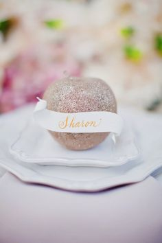 a curled paper seating tag + a bedazzled apple? Big thumbs up.  Photography by http://tinywater.com, Calligraphy by http://www.artofhand.com/